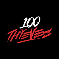 100 Thieves - logo