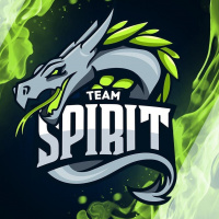 Team Spirit - logo
