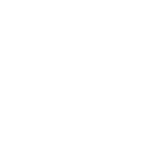 BIG - logo
