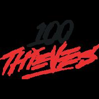 100 Thieves - logo