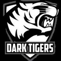 Dark Tigers Academy - logo