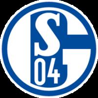 FC Schalke 04 Evolution - logo