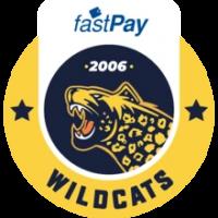 İstanbul Wildcats - logo